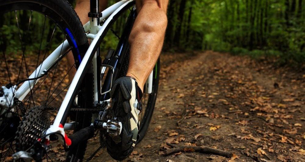 Top 10 Best Comfort Bikes Reviews In 2019