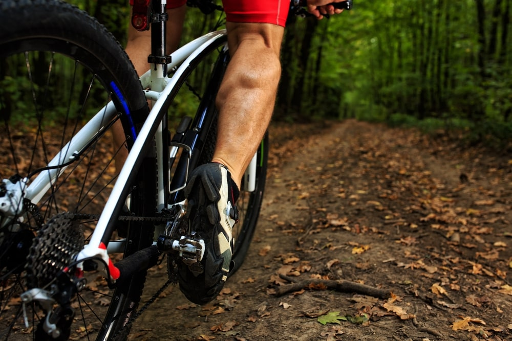 Best Comfort Bikes 2019 Top 10 Best Comfort Bikes Under 500 Reviews In 2019 | Bam Margera