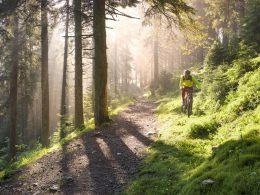 Top 8 Best Mountain Bike Helmets Reviews In 2019